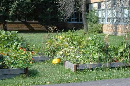 Pleasant Park garden beds